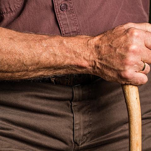 おじいちゃんの腕